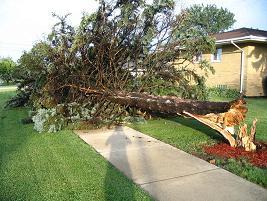 Damage near Oak Park