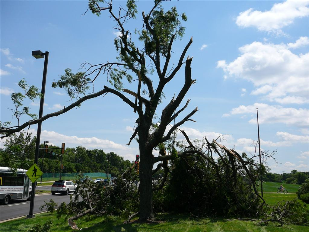 Oak Brook Storm Damage