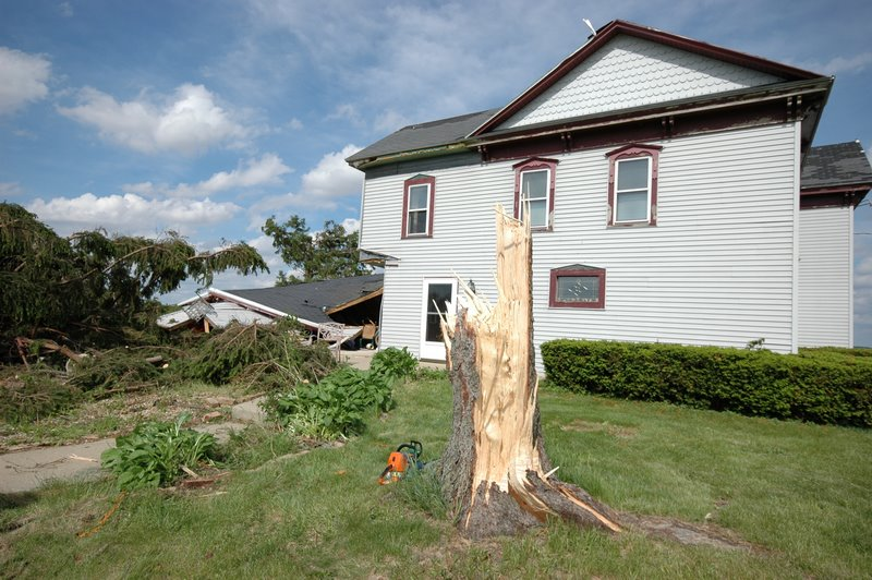 Tree, house, and outbuilding damage along Daisy Road.