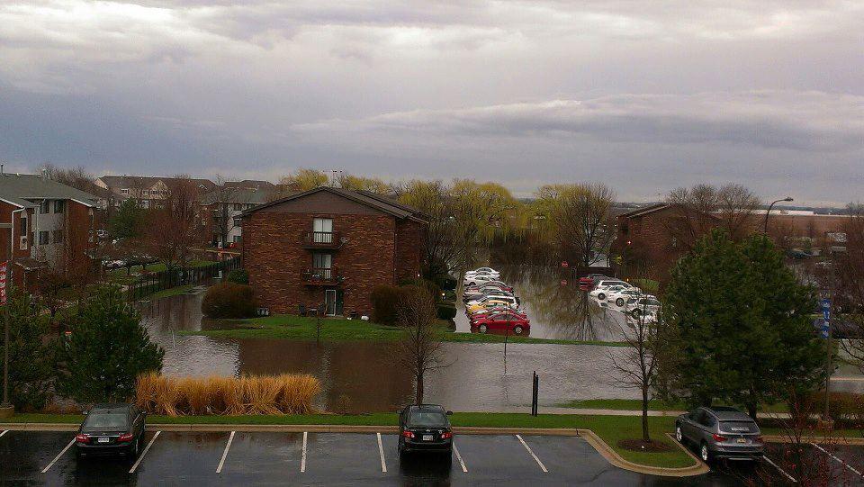 Photo2 - Near Route 59 in Naperville.  Courtesy of Brandi Slavich.