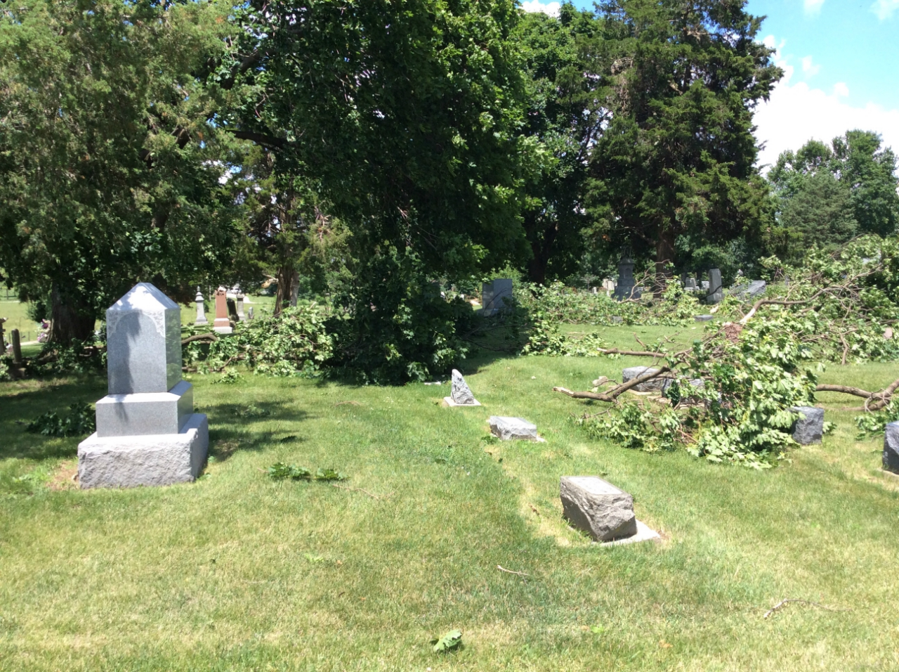 Trees down in cemetary just south of Troy Grove