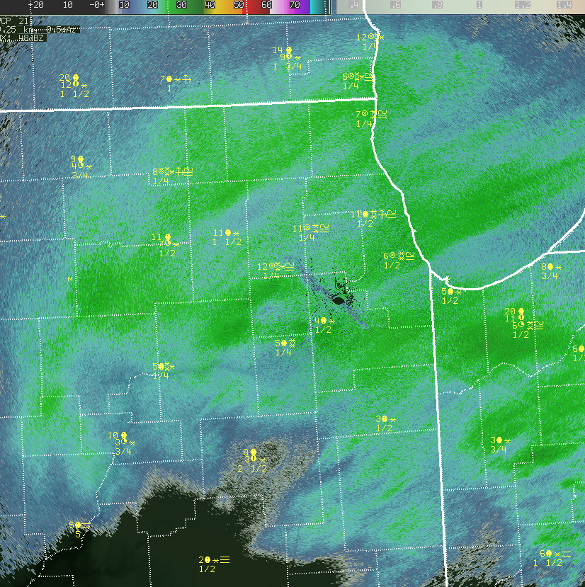 February 1st 10am-430 pm NWS Chicago Radar Loop